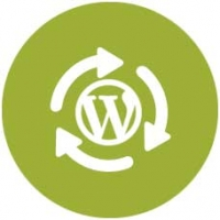 Consultoría Wordpress