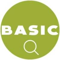 Auditoria SEO básica