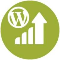 Desarrollo Módulos Wordpress