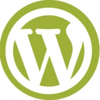 Diseño Personalizado Temas Wordpress